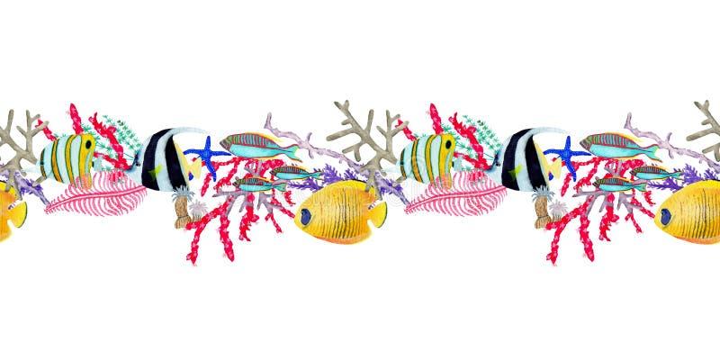 Disegnato a mano nell'elemento naturale del mondo del mare dell'acquerello Bordo seemless della barriera corallina su fondo bianc illustrazione di stock