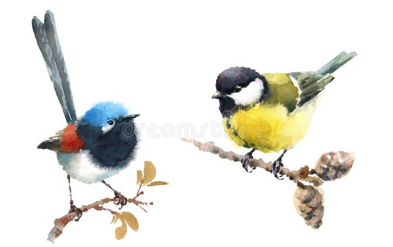 Disegnato a mano stabilito leggiadramente dell'illustrazione dell'acquerello degli uccelli del capezzolo e dello scricciolo illustrazione di stock