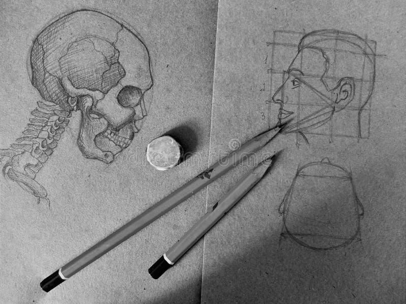 Disegni a matita lo schizzo di un cranio e di una testa umana nel vecchio taccuino fotografia stock libera da diritti