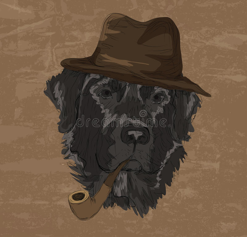 Disegno d'annata di labrador retriever con il cappello ed il tubo illustrazione di stock