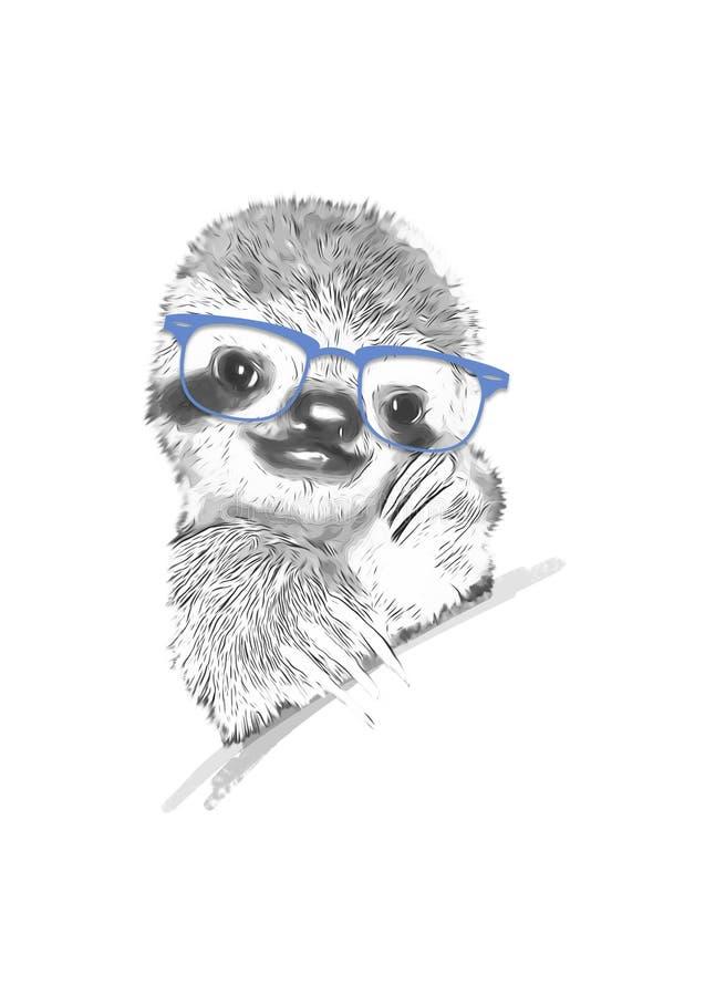 Disegno del bradipo con i vetri blu immagine stock libera da diritti