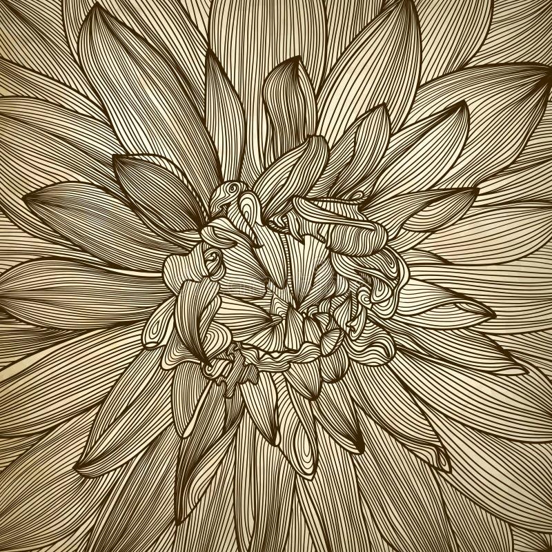 Disegno del fiore della dalia illustrazione di stock