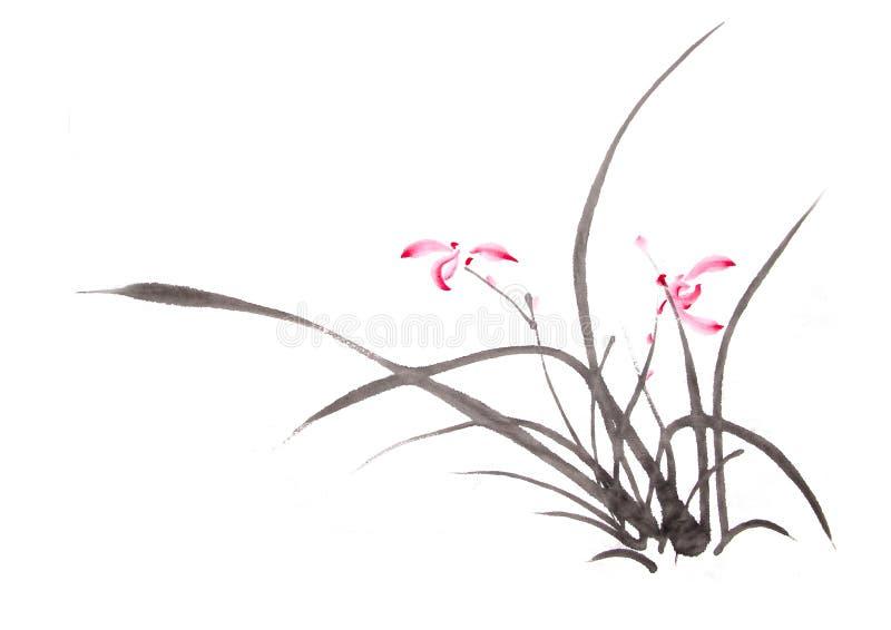 Disegno dell'orchidea dell'inchiostro illustrazione vettoriale