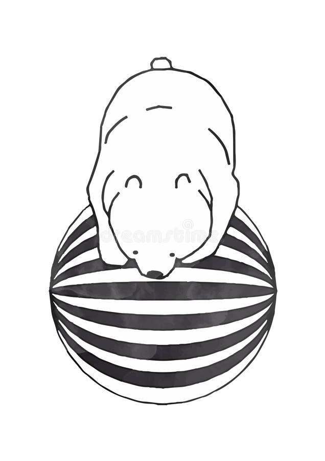 Disegno dell'orso bianco dell'acrobata al circo fotografia stock libera da diritti