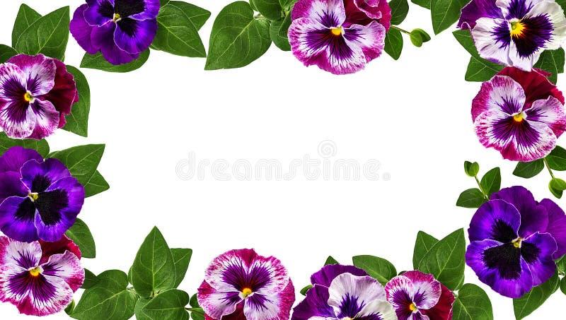 Disegno di arte dei fiori La pagina ha fatto i fiori, il fondo del biglietto di S. Valentino delle foglie verdi con i fiori fotografia stock libera da diritti