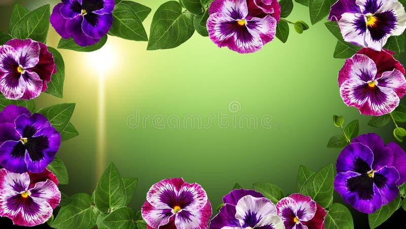 Disegno di arte dei fiori La pagina ha fatto i fiori, il fondo del biglietto di S. Valentino delle foglie verdi con i fiori fotografia stock