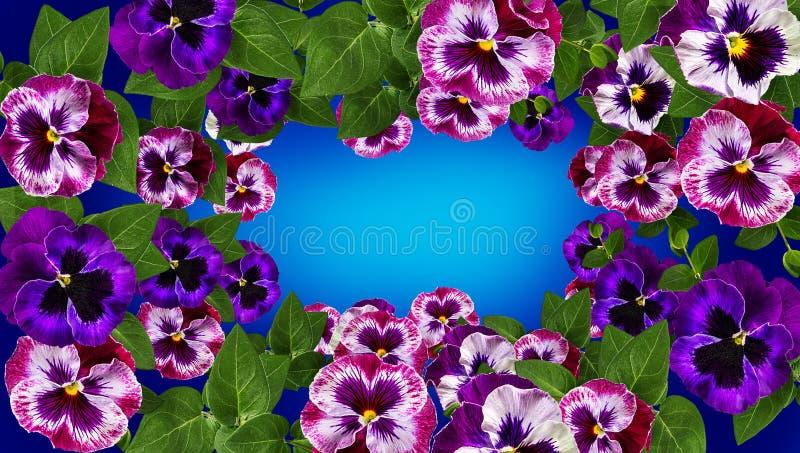 Disegno di arte dei fiori La pagina ha fatto i fiori, il fondo del biglietto di S. Valentino delle foglie verdi con i fiori immagini stock libere da diritti