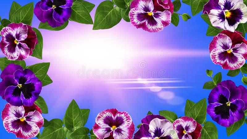 Disegno di arte dei fiori La pagina ha fatto i fiori, il fondo del biglietto di S. Valentino delle foglie verdi con i fiori fotografie stock