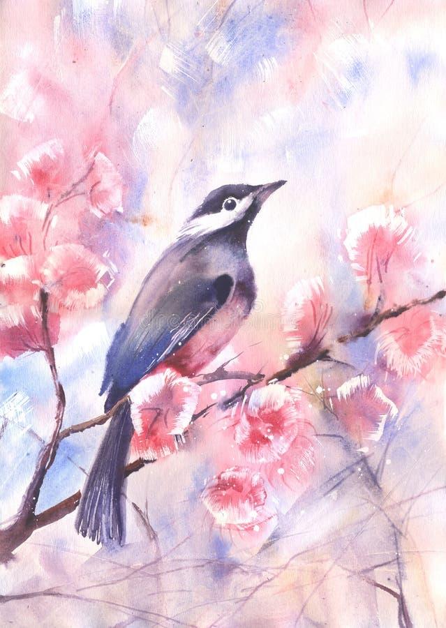 Disegno di colore di acqua di un uccello su un ramo illustrazione vettoriale