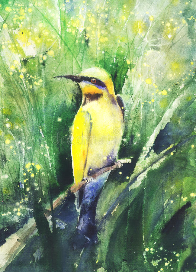 Disegno di colore di acqua di un uccello tropicale illustrazione vettoriale