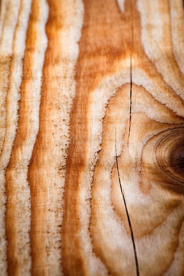 Disegno di dettaglio di un bordo di legno fotografia stock libera da diritti