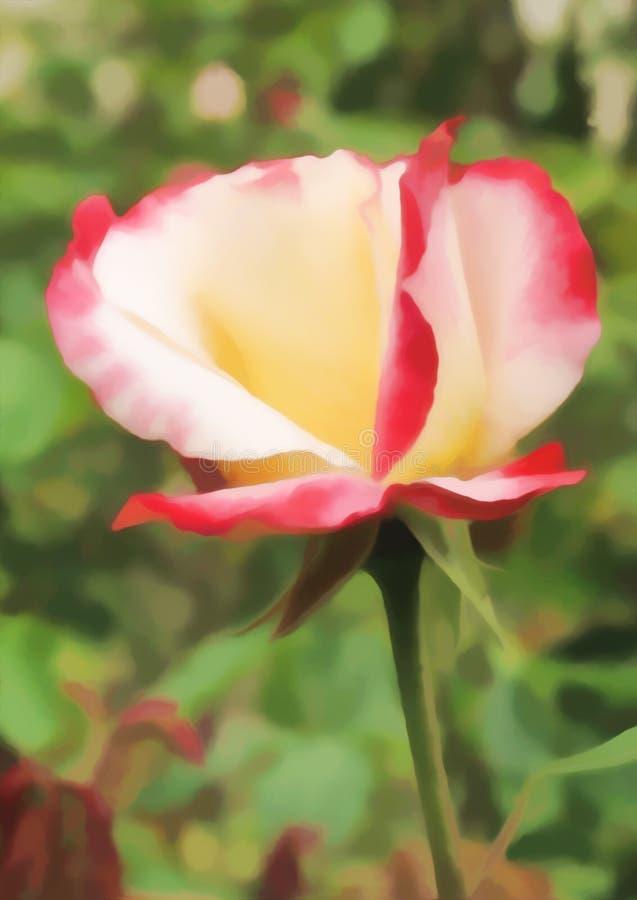 Disegno-illustrazione di Digital Fiore di Rosa sul fondo delle foglie verdi Pittura acrilica illustrazione di stock