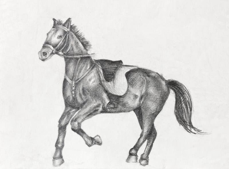 Disegno a matita di un cavallo corrente fotografie stock for Disegni di cavalli a matita