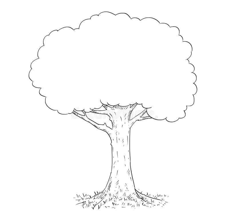 Disegno a penna ed inchiostro della mano di vettore dell'albero illustrazione di stock