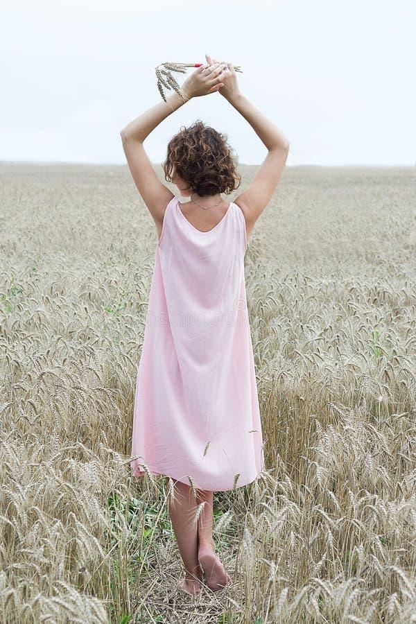 Disfrutar de la naturaleza Estancia de la mujer en la opinión de la parte posterior del campo de trigo foto de archivo libre de regalías