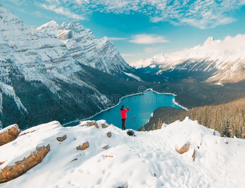 Disfrutar de las opiniones imponentes del lago Peyto en el parque nacional de Banff imagenes de archivo