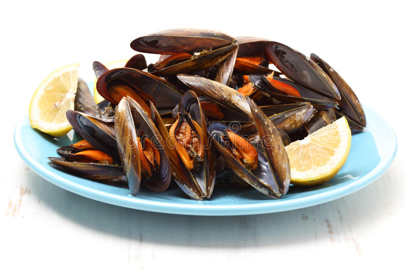 Dish of boiled mussels royalty free stock photo