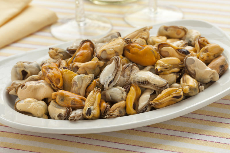 Dish with fresh cooked mussels. Ready to eat royalty free stock photos