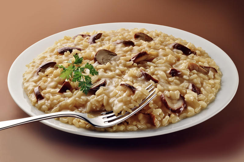 Dish of Mushroom Risotto with Fork stock photography