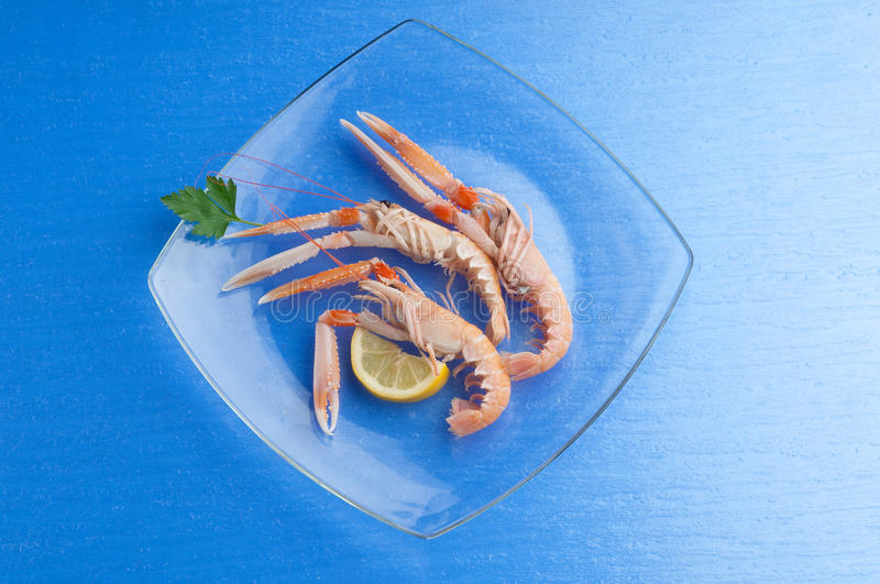 Dish with scampi stock photos
