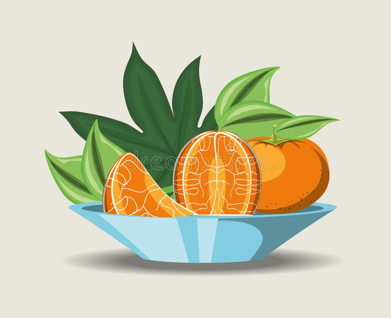 Citric fruits design. Dish with tangerine segments over white background, colorful design. vector illustration vector illustration