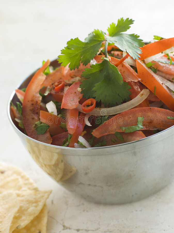 Dish of Tomato Red Onion and Coriander Relish royalty free stock image