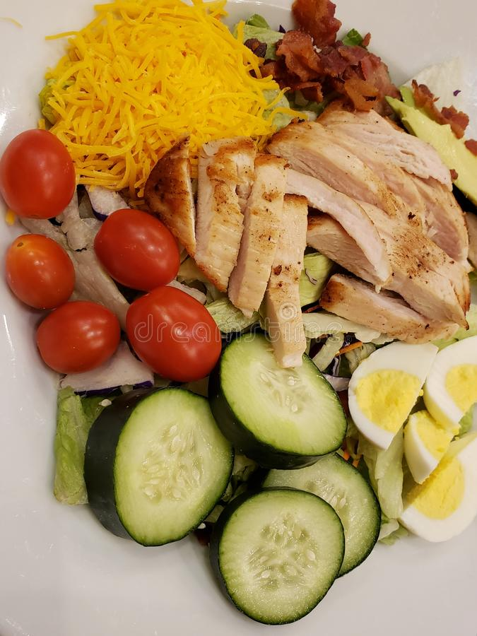 Dish with vegetable salad, cooked egg and roasted chicken slices, healthy food for lunch. Dish vegetable salad cooked egg roasted chicken slices healthy food royalty free stock photos