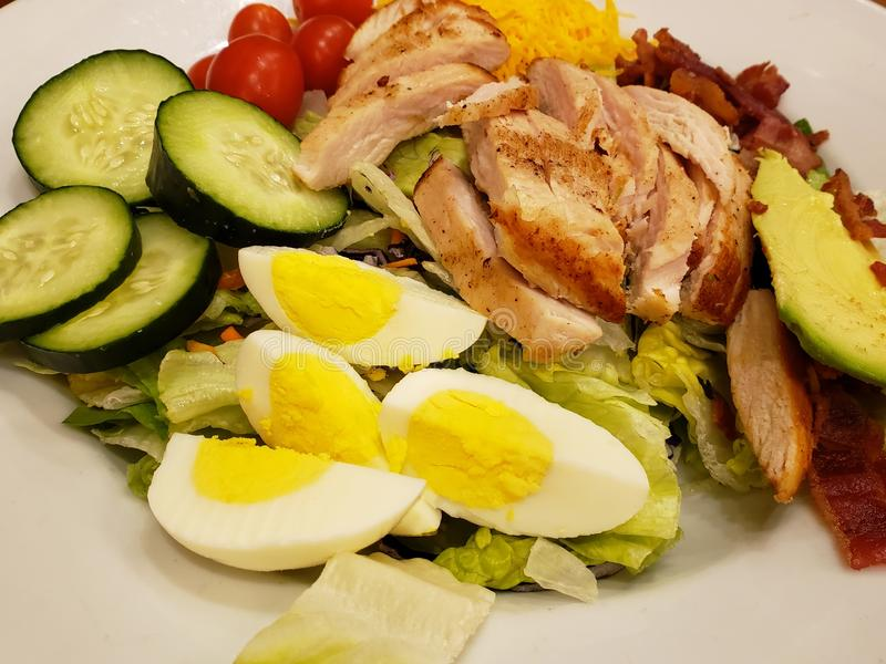 Dish with vegetable salad, cooked egg and roasted chicken slices, healthy food for lunch. Dish vegetable salad cooked egg roasted chicken slices healthy food stock image