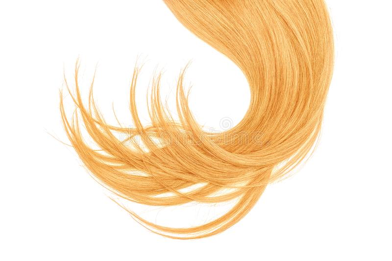 Disheveled blond hair isolated on white background. Natural healthy hair isolated on white background. Detailed clipart for your collages and illustrations stock images