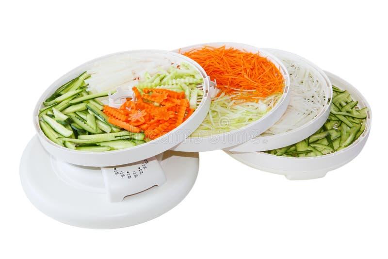 Disidratatore di verdure immagine stock