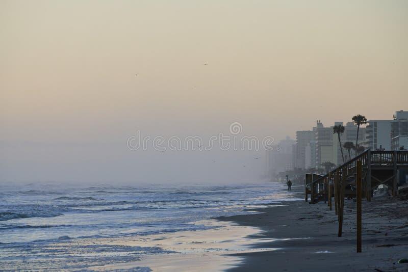 Disig morgon på Daytona Beach med högvatten arkivbild