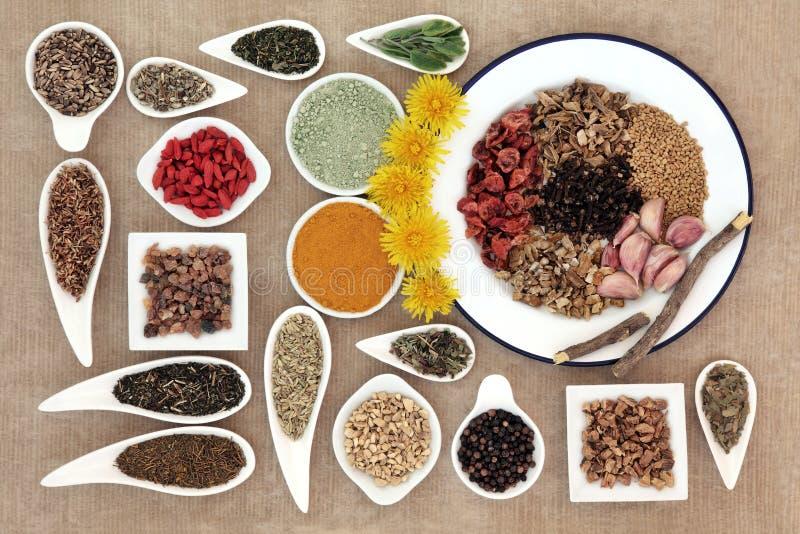 Disintossicazione Superfood del fegato fotografia stock