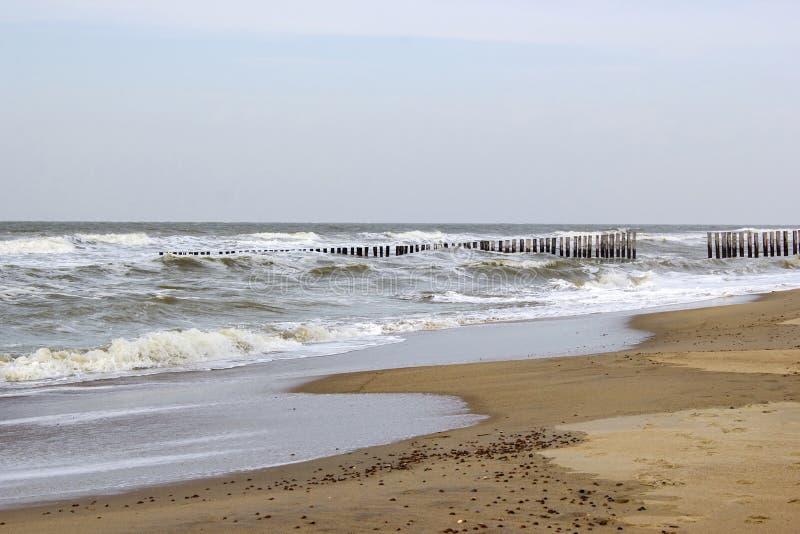 Disjuntor de onda feito de estacas de madeira na praia imagens de stock royalty free