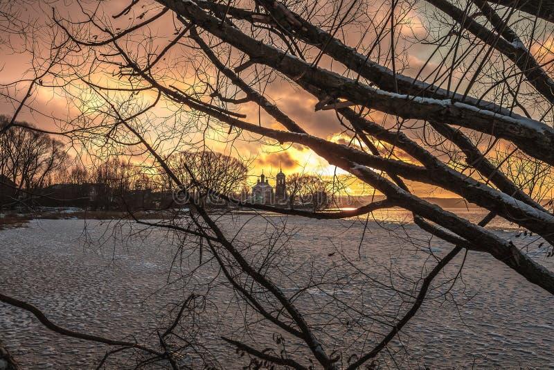 Disminución rosada del invierno fotografía de archivo libre de regalías