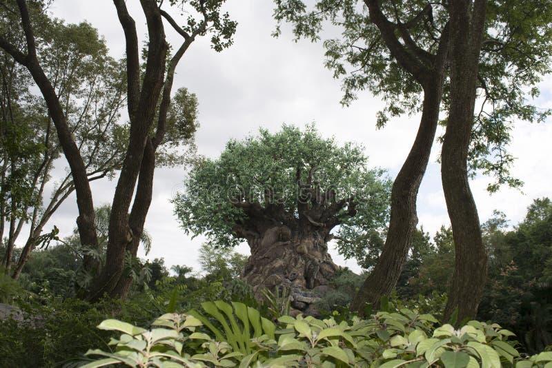 Disney Animal Kingdom - Tree of Life. Disney Orlando, Florida, USA. Photo taken on: October 24th, 2015 royalty free stock photo