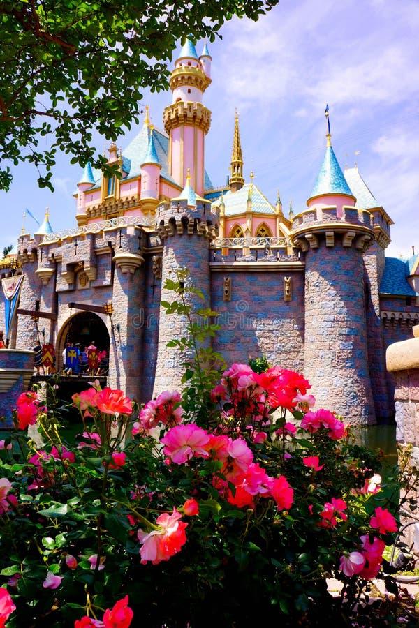 Disney Cinderella Castle nei fiori di primavera fotografie stock libere da diritti