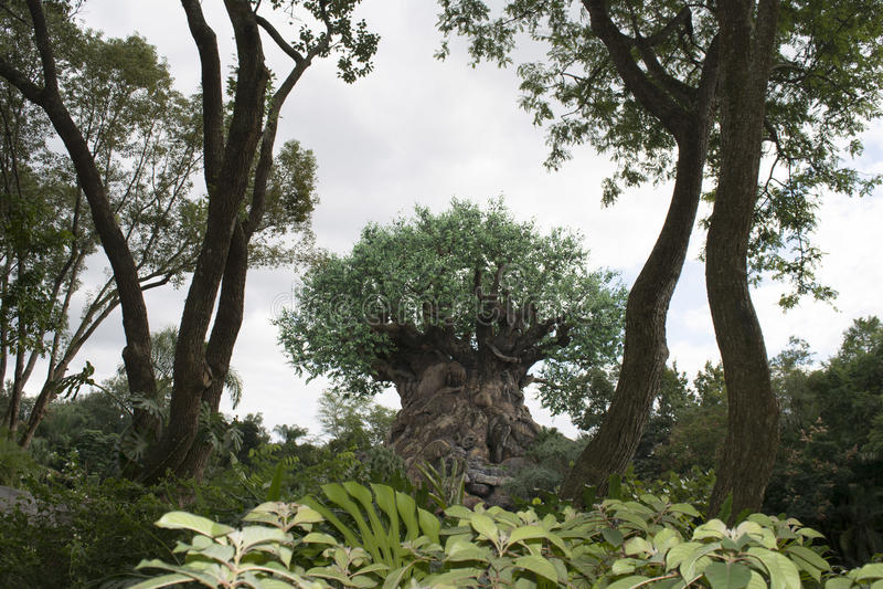 Disney djurriket - träd av liv royaltyfri foto