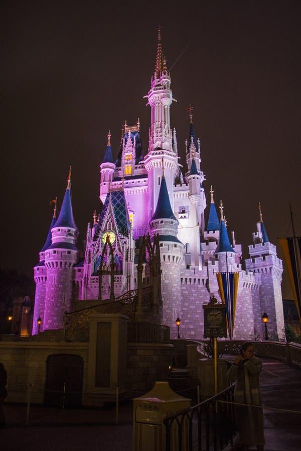 Disney-Kasteel Walt Disney World - Orlando/FL royalty-vrije stock fotografie