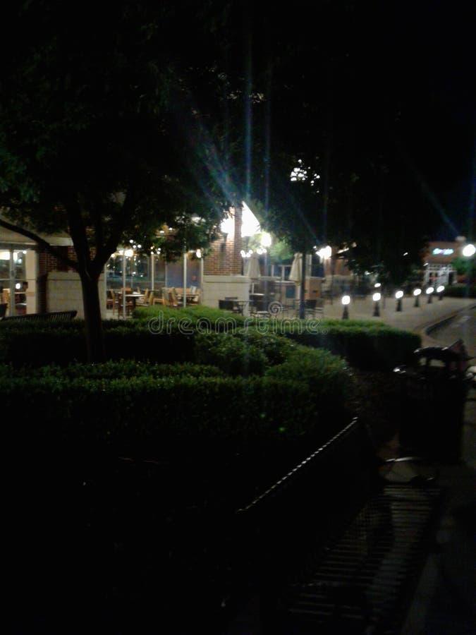 Disney nätter arkivbilder