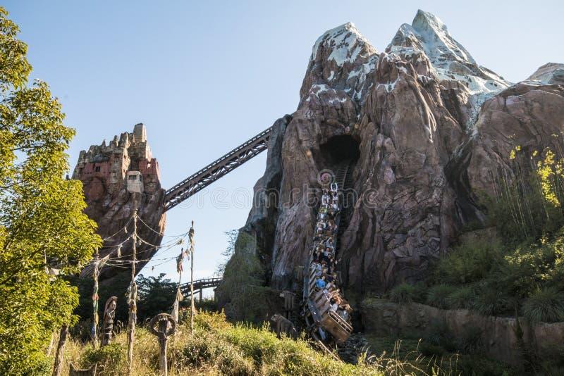 Disney's Animal Kingdom. Expedition Everest coaster - Orlando/FL - USA stock photos