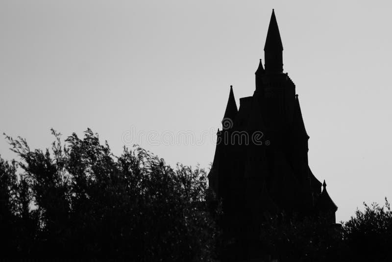 Disney skuggaSilhoutte slott royaltyfri foto