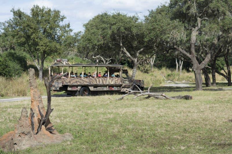 Disney värld Kilimanjaro Safari Animal Kindom royaltyfri foto
