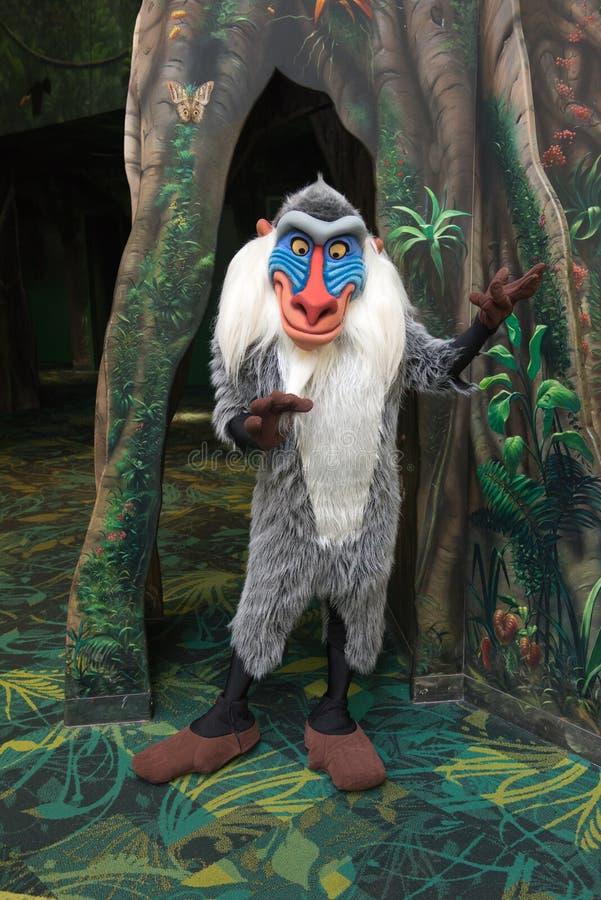 Disney World Animal Kingdom Rafiki Character. The Rafiki baboon character experience at the Animal Kingdom in Walt Disney World. Orlando, Florida is a popular stock image