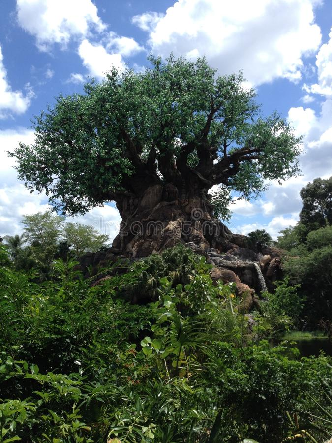 Disneyland Orlando arkivbilder