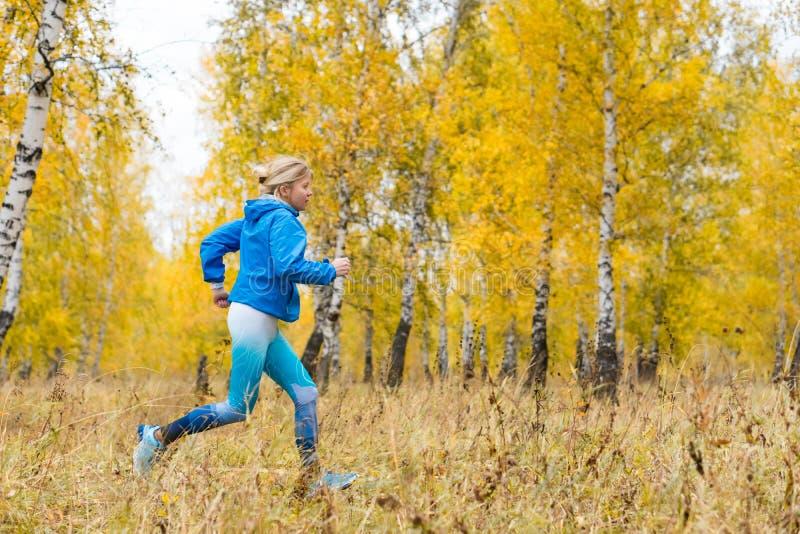Disparado de uma mulher adulta bonita do atleta que corre no parque do outono imagens de stock