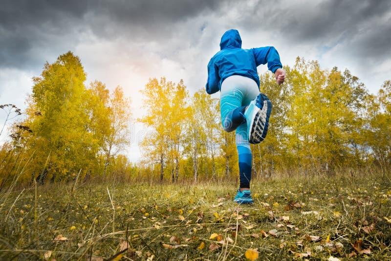 Disparado de uma mulher adulta bonita do atleta que corre no parque do outono foto de stock