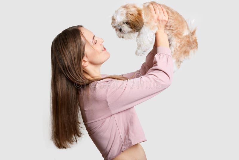 Disparado lateralmente da mulher de cabelo escura satisfeito guarda seu amigo de quatro pés no ar, jogos com cão da pedigree, apr imagem de stock royalty free