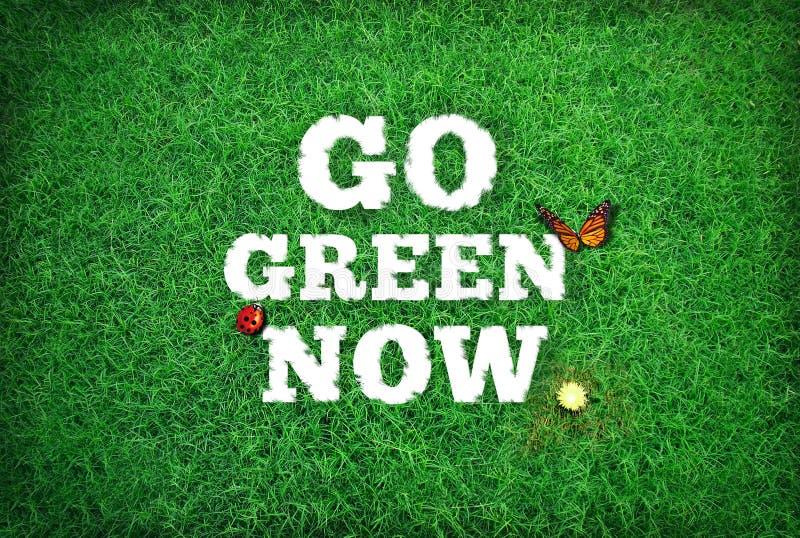 Disparaissent le vert maintenant photo stock