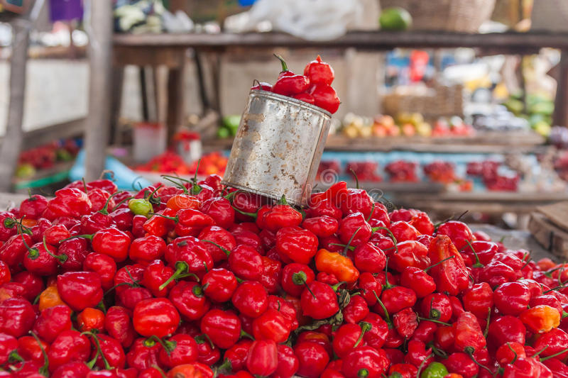 Download Display of chilli stock image. Image of many, market - 23837911