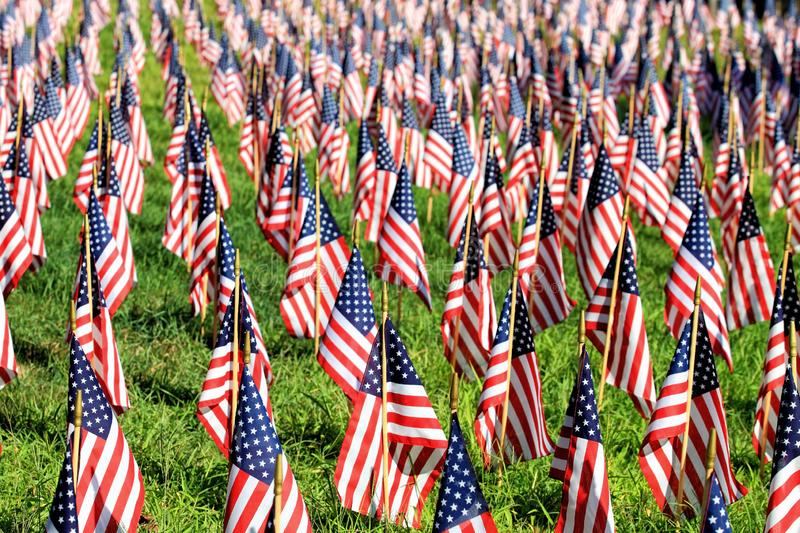 A display of hundreds of American flags. Displayed in a field of grass royalty free stock photography
